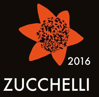 catalogo-zucchelli-arte-2016